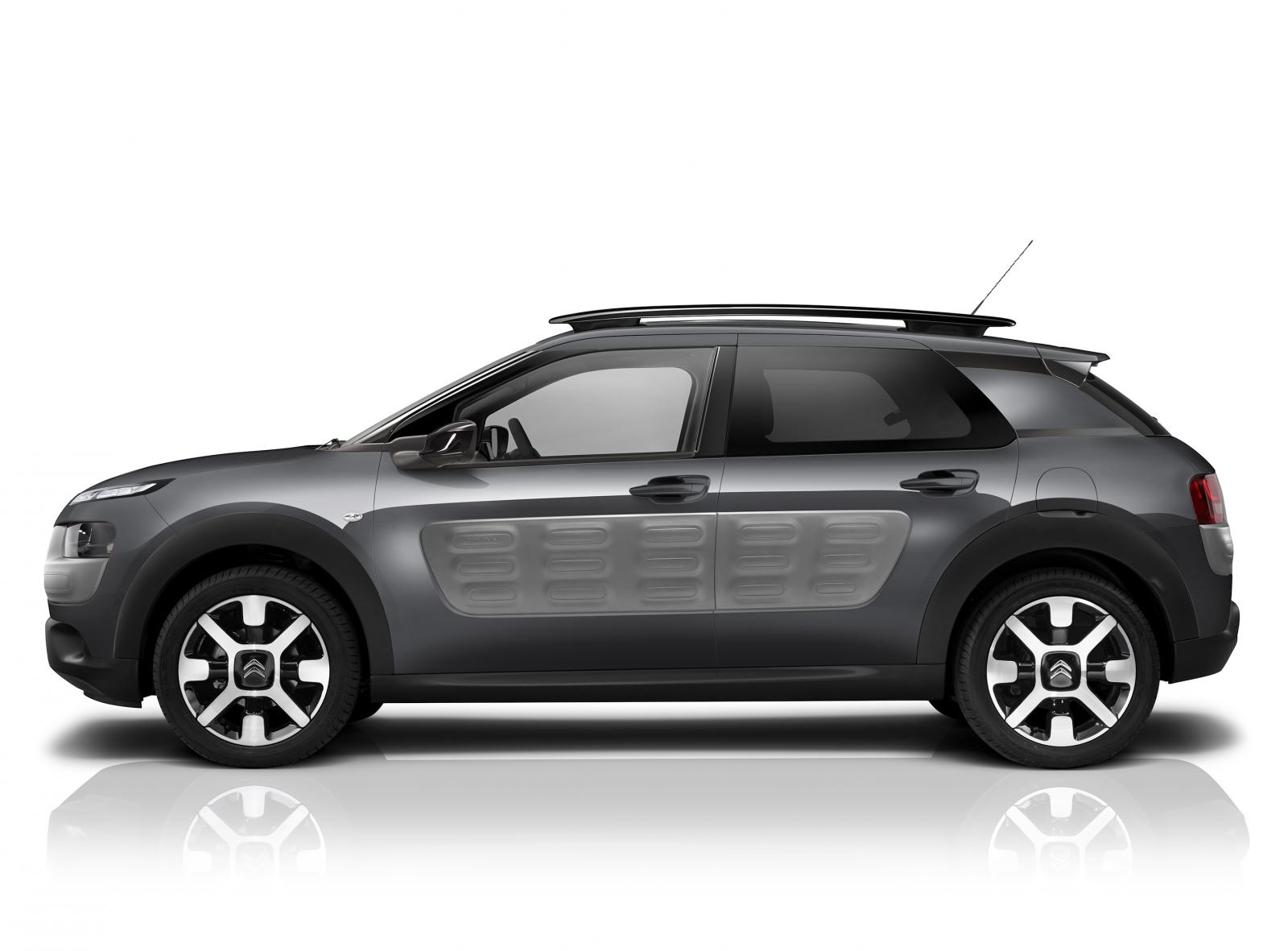 C4 Cactus Shine Edition 2015 grå Shark